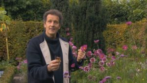 Read more about the article Gardeners' World episode 3 2017