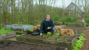 Read more about the article Gardeners' World episode 5 2017