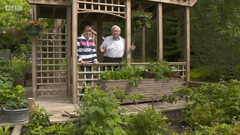 You are currently viewing The Beechgrove Garden episode 14 2017