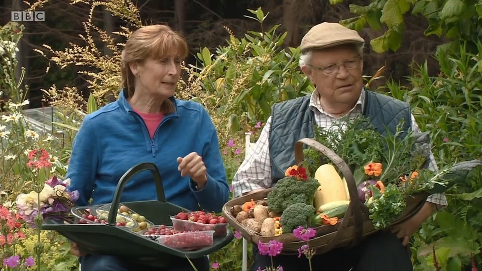 You are currently viewing The Beechgrove Garden episode 15 2017
