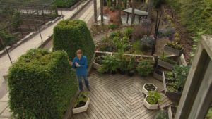 Read more about the article The Beechgrove Garden episode 16 2015
