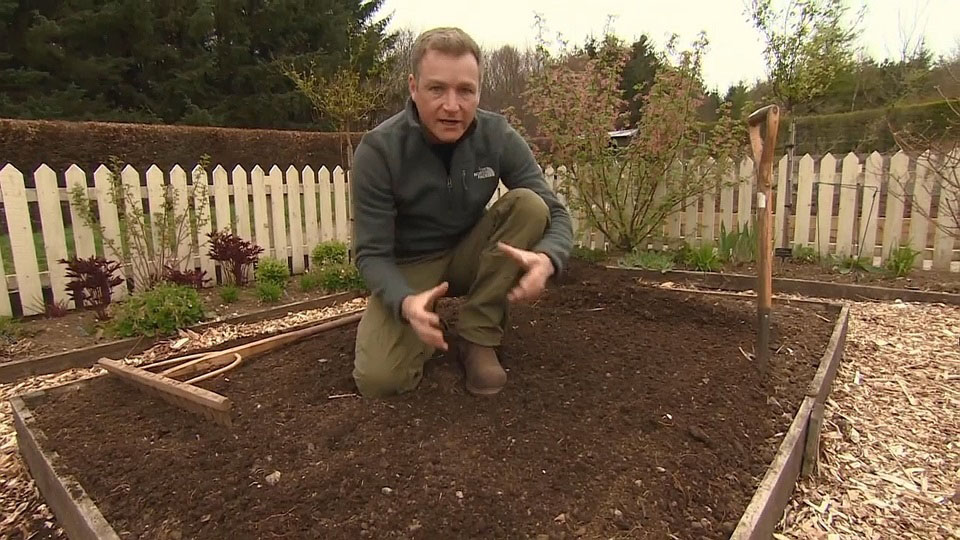 Read more about the article The Beechgrove Garden episode 6 2017
