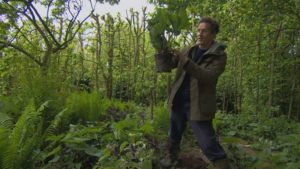 Gardeners World episode 11 2015