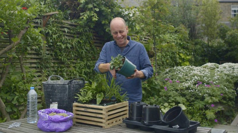 Read more about the article Gardeners World episode 14 2015