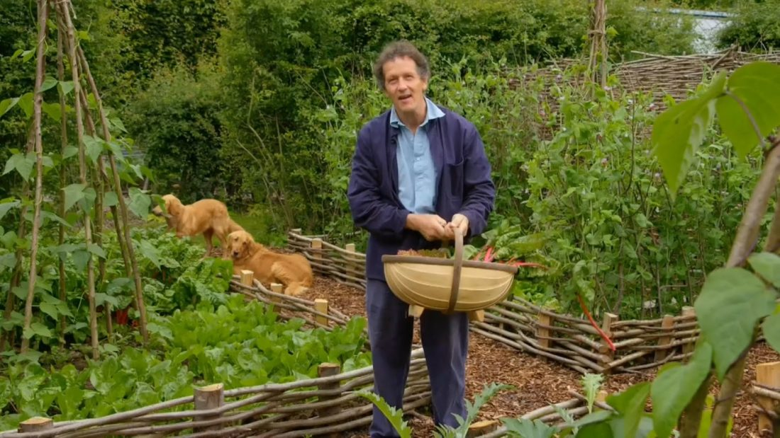 Read more about the article Gardeners World episode 14 2016