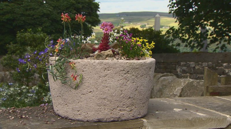 Read more about the article Gardeners World episode 16 2015