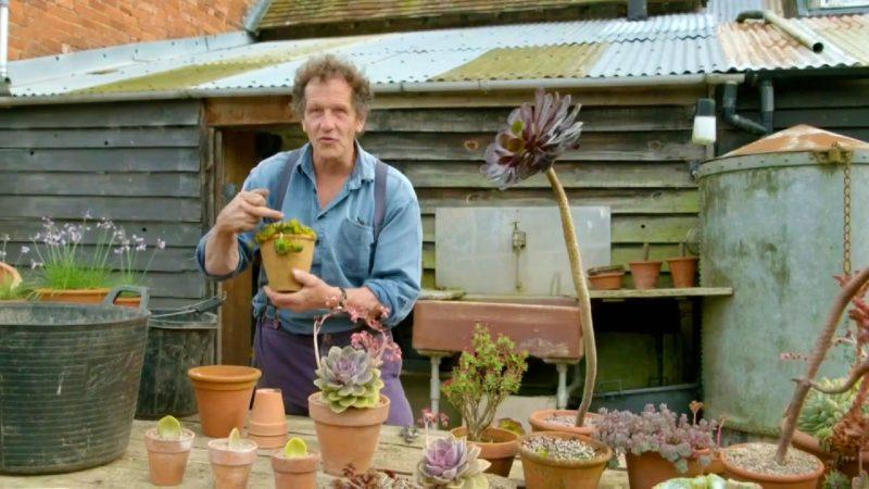 Gardeners World episode 22 2017