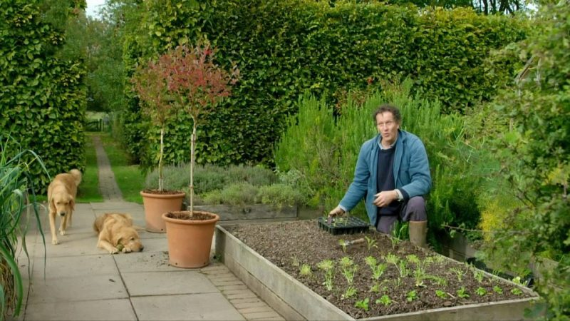 Gardeners World episode 29 2017