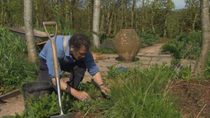 Read more about the article Gardeners World episode 8 2015