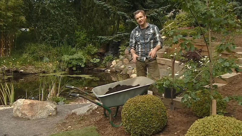 Read more about the article The Beechgrove Garden episode 15 2016