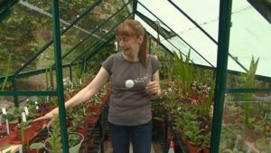 Read more about the article The Beechgrove Garden episode 21 2015
