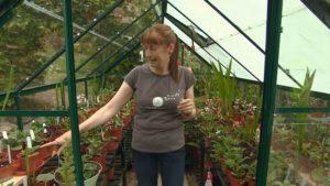 The Beechgrove Garden episode 21 2015
