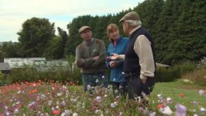 Read more about the article The Beechgrove Garden episode 23 2015