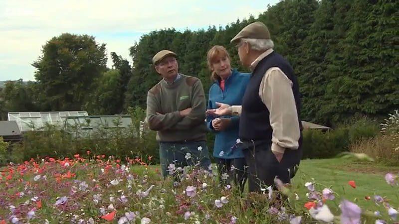 The Beechgrove Garden episode 23 2015