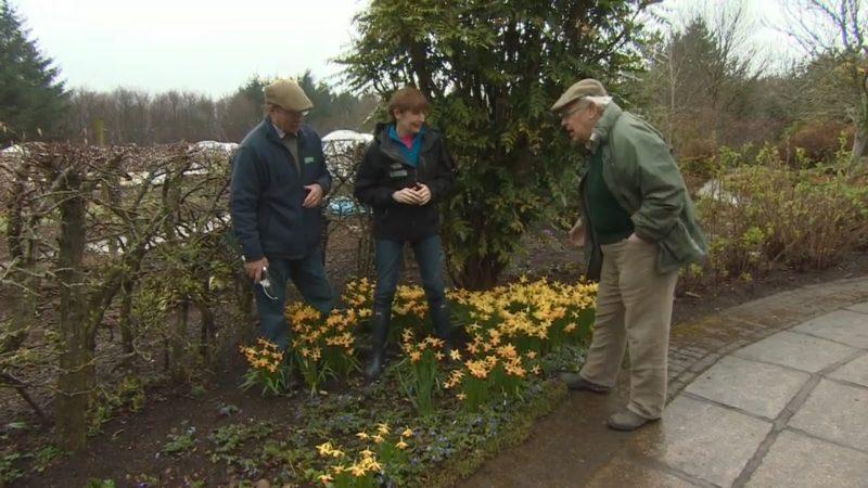 The Beechgrove Garden episode 25 2015