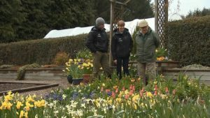 Read more about the article The Beechgrove Garden episode 6 2016
