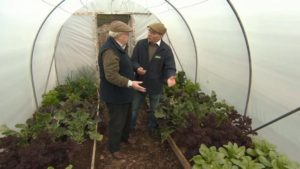 Read more about the article The Beechgrove Garden episode 7 2016
