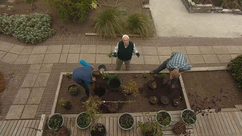 Read more about the article The Beechgrove Garden episode 9 2016