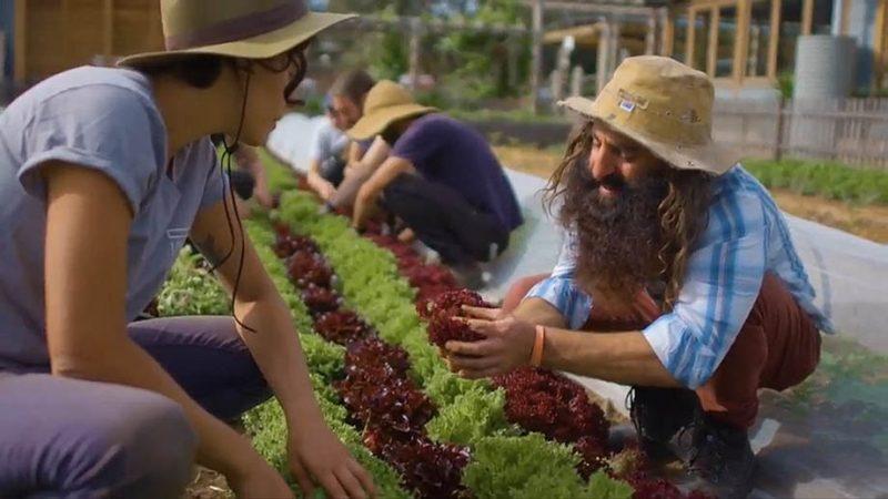 Gardening Australia episode 1 2018