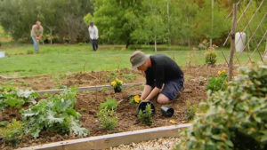 Read more about the article Gardening Australia ep.3 2018