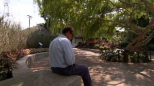 Read more about the article Around the World in 80 Gardens ep 10