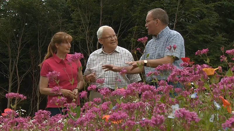 Read more about the article The Beechgrove Garden episode 16 2016