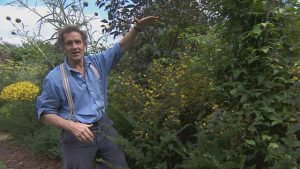 Gardeners World episode 20 2015 - Monty shares some timely tips