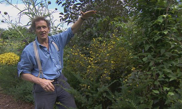 Read more about the article Gardeners World episode 20 2015
