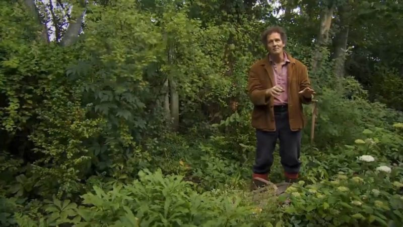 Read more about the article Gardeners World episode 24 2015