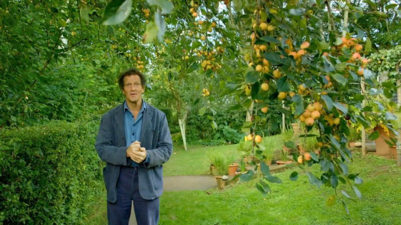 You are currently viewing Gardeners World episode 24 2016