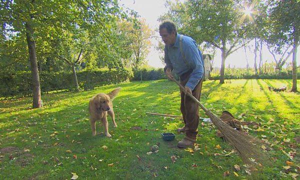 Gardeners World episode 29 2015