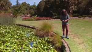 Read more about the article Gardening Australia ep. 7 2018