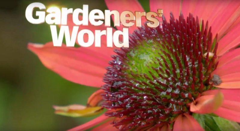 Gardeners World episode 28 2016