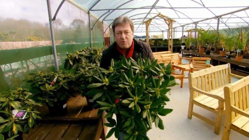 Love Your Garden episode 3 2015