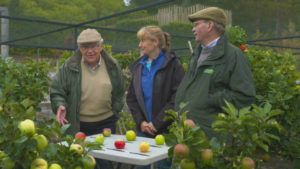 Read more about the article The Beechgrove Garden episode 18 2018