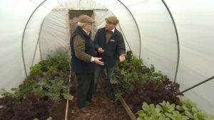 Read more about the article The Beechgrove Garden episode 2 2018
