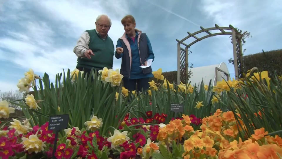 Read more about the article The Beechgrove Garden episode 4 2018