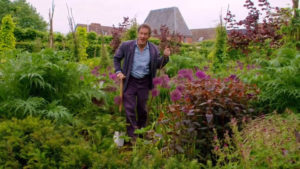 Read more about the article Gardeners World 2018 episode 11