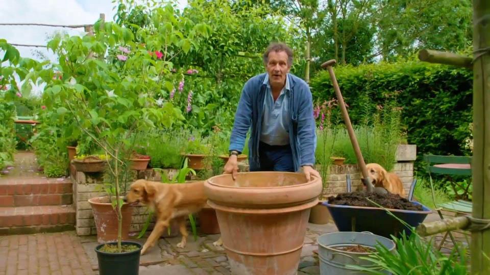 Gardeners World 2018 episode 13