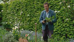 Gardeners World 2018 episode 9 (1)