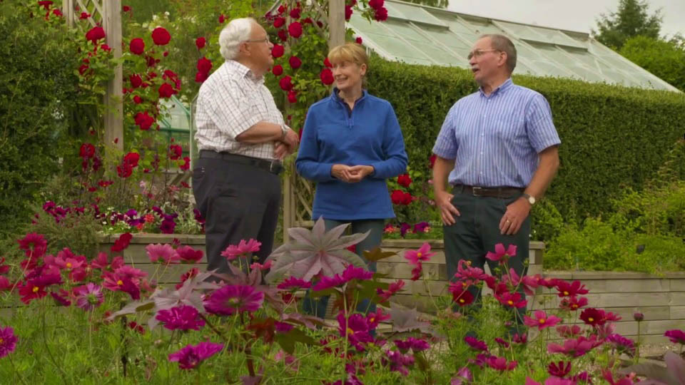 You are currently viewing The Beechgrove Garden episode 12 2018