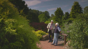 Read more about the article The Beechgrove Garden episode 15 2018