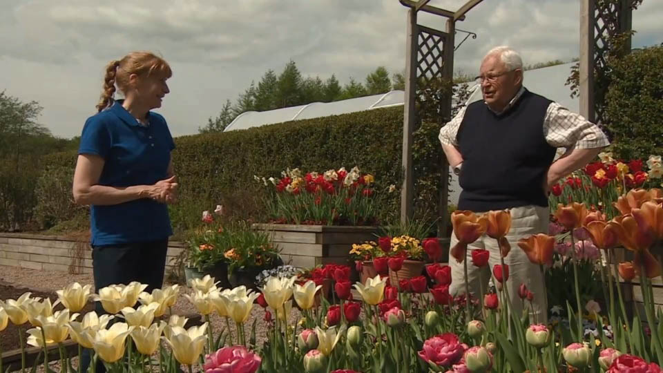 You are currently viewing The Beechgrove Garden episode 6 2018
