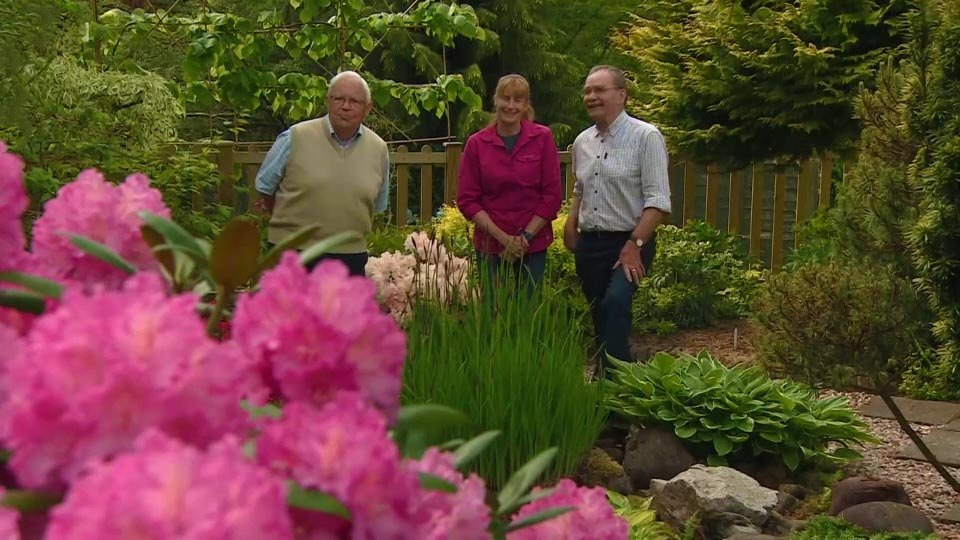 You are currently viewing The Beechgrove Garden episode 8 2018