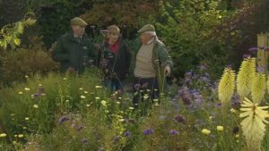 Read more about the article The Beechgrove Garden episode 22 2018