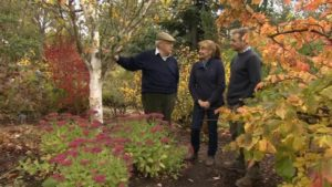 The Beechgrove Garden episode 23 2018