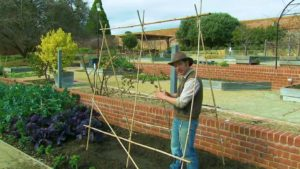 Gardening Australia ep. 38 2018