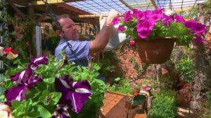 Gardening Australia episode 41 2018