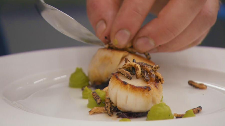You are currently viewing MasterChef episode 3 – The Professionals 2018