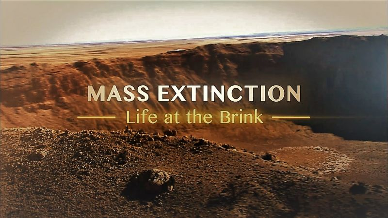 You are currently viewing Mass Extinction: Life at the Brink